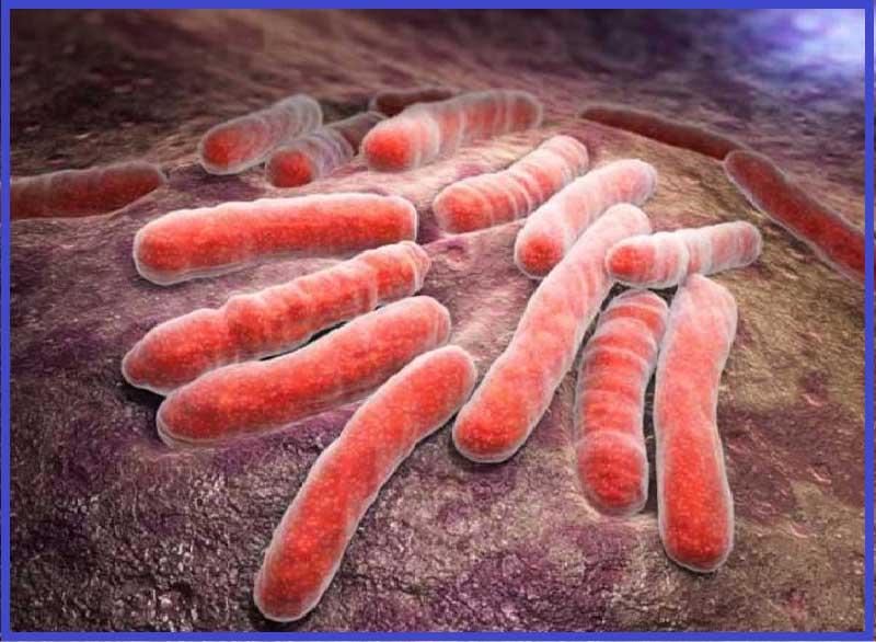 туберкулёз, передача туберкулёза, как передаётся туберкулёз, кашель при туберкулёзе, микобактерия