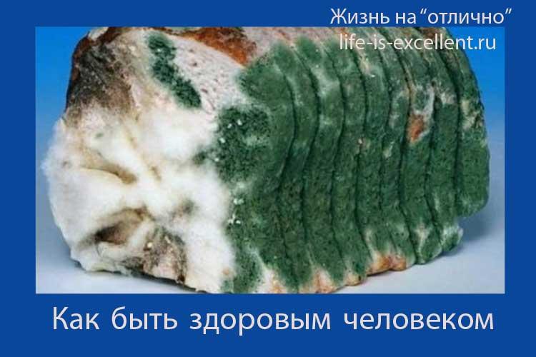 Грибковая инфекция, плесень, чёрная плесень, чем опасна чёрная плесень, удаление плесени, грибковые заболевания, микозы, лишаи, кандидоз, аспергиллёз, лечение грибковых инфекций, антигрибковая диета, профилактика грибковых инфекций