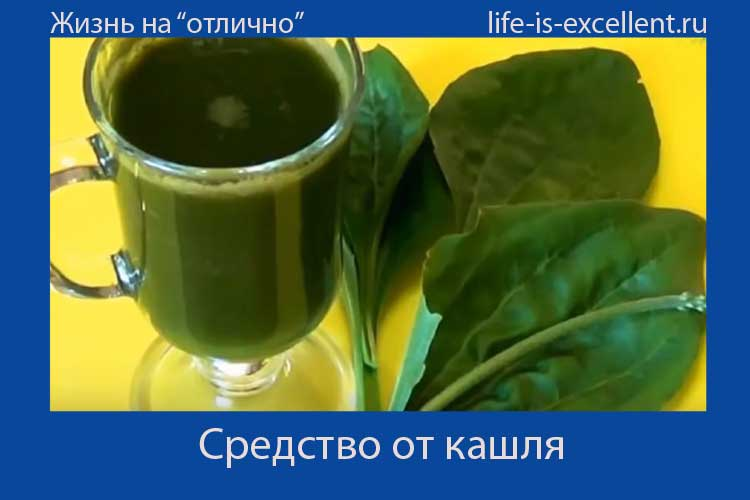 средство от кашля, чай от кашля, рецепт от кашля, отхаркивающее средство, подорожник, подорожник от кашля, отхаркивающие чаи, отвар подорожника, народное отхаркивающее средство, сок подорожника, сок подорожника с мёдом, сок подорожника с сахаром, сок подорожника для лечения респираторного заболевания, сок подорожника при простудном заболевании, сок подорожника от кашля